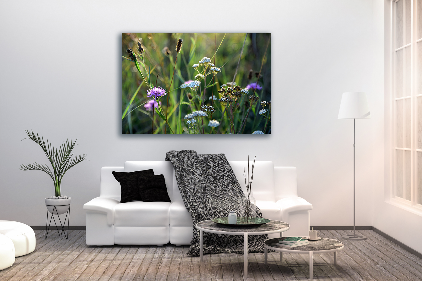 Nature photo, landscape photo, floral photo, summer photo, example image 2