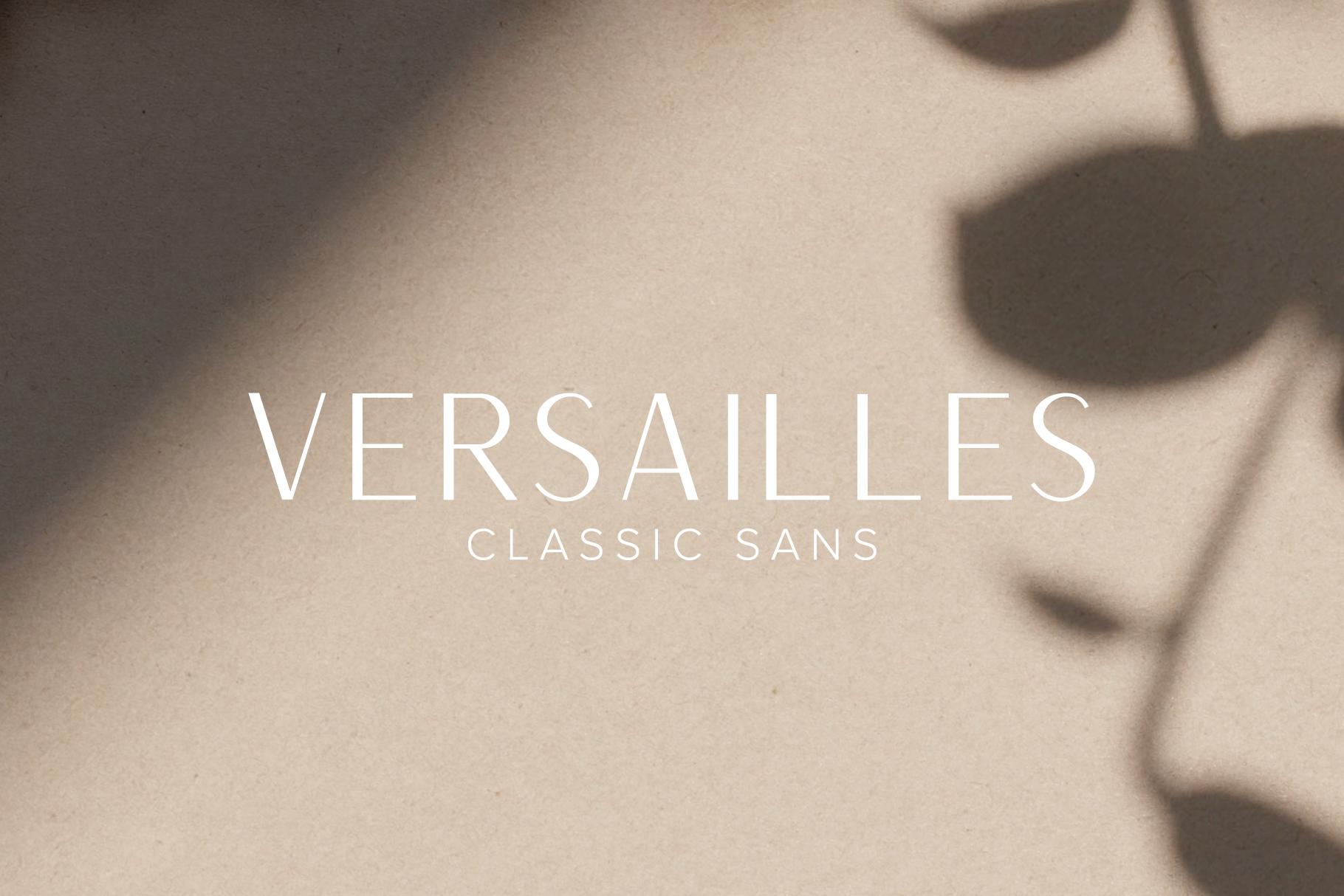 Versailles   A Classic Sans example image 1
