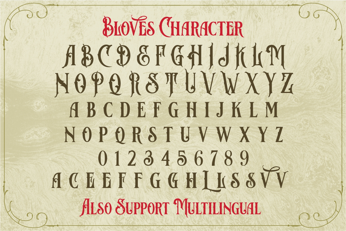 Bloves Vintage Typeface example image 8