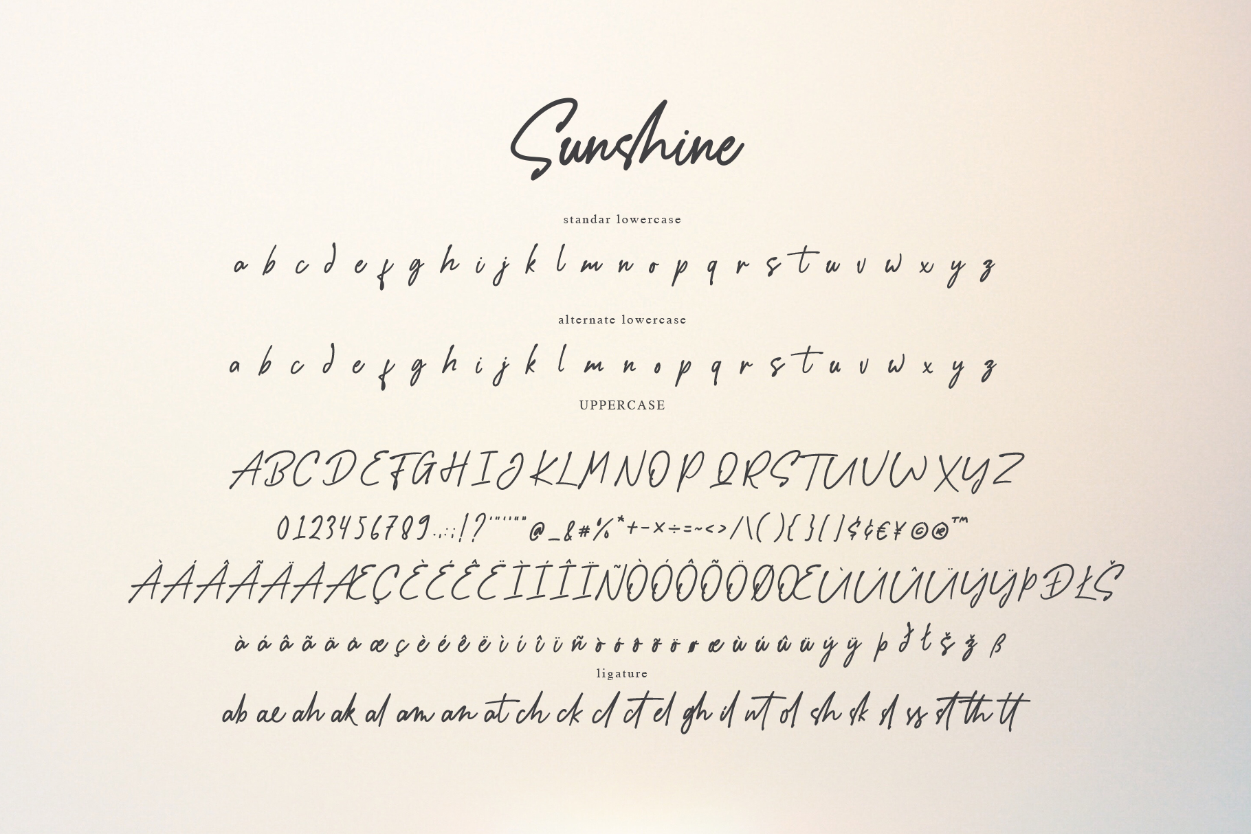 Sunshine - a Handwritten Font example image 8