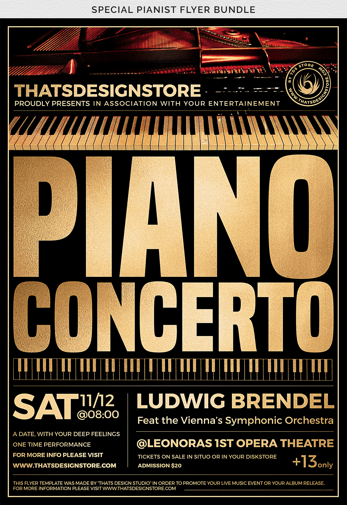 Special Pianist Flyer Bundle example image 11