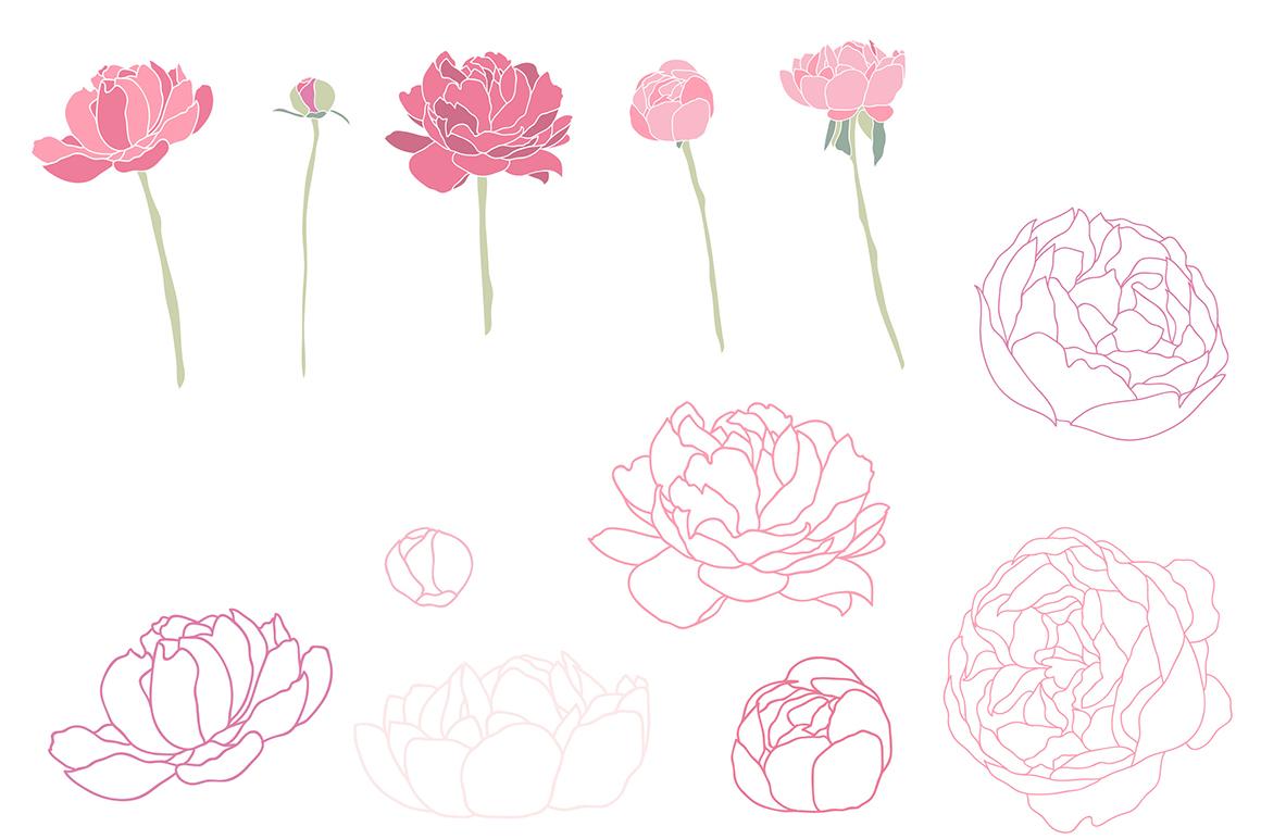 Flower Peonies example image 3