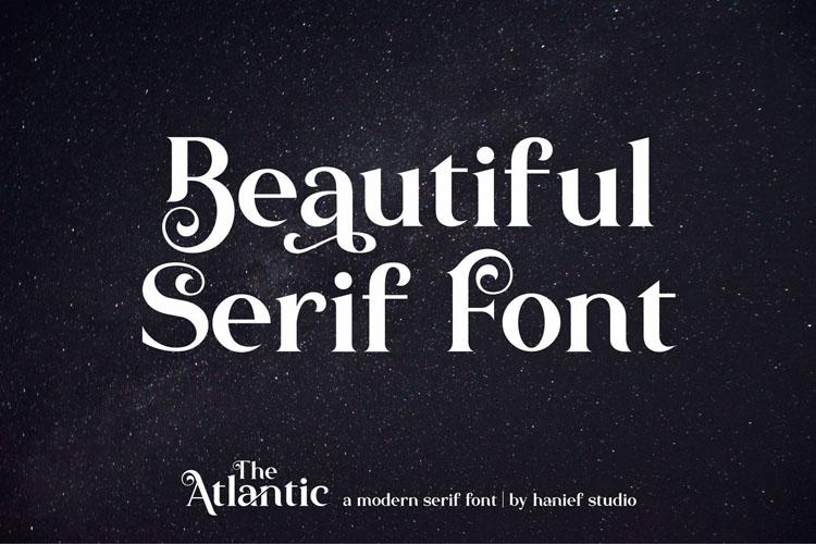 The Atlantic//Modern Serif Font example image 7