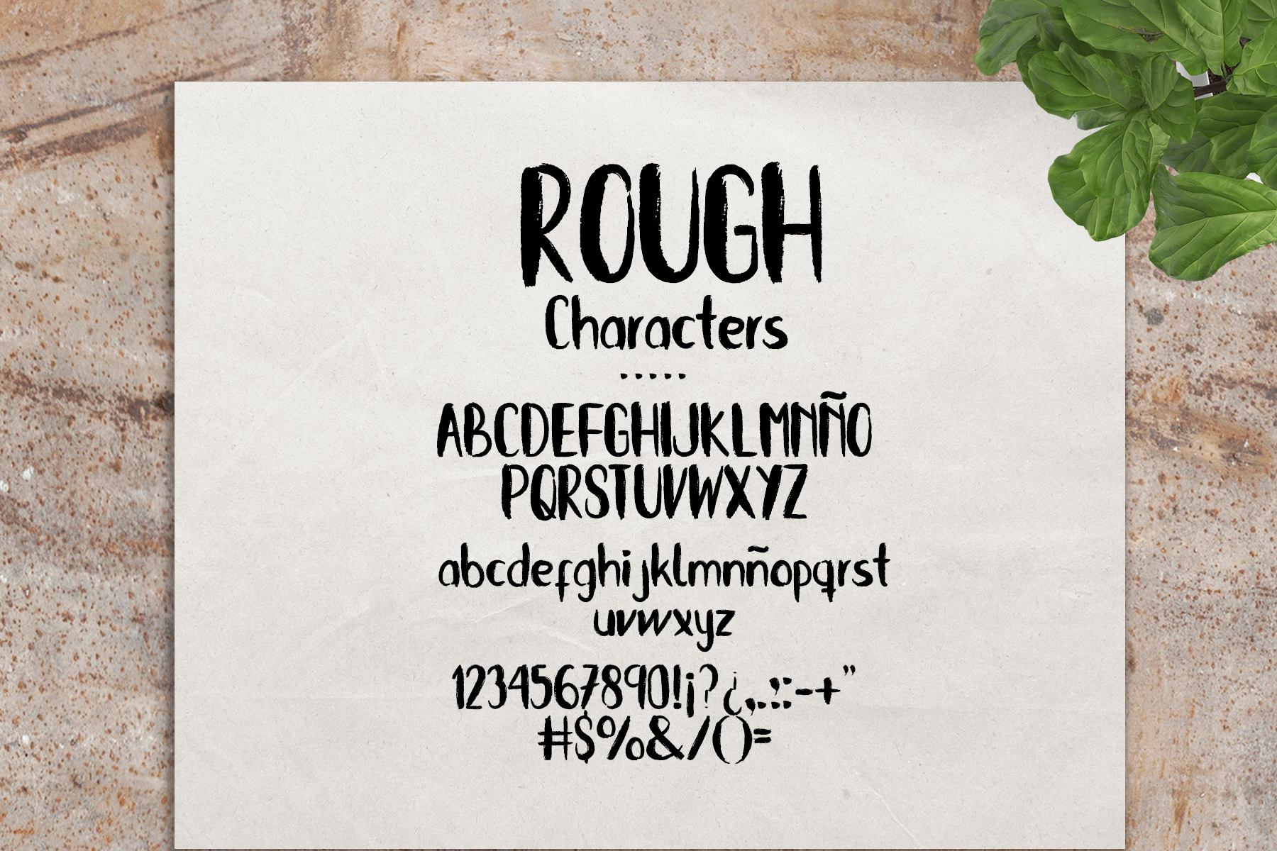 Sweet Kiwy: font trio example image 4