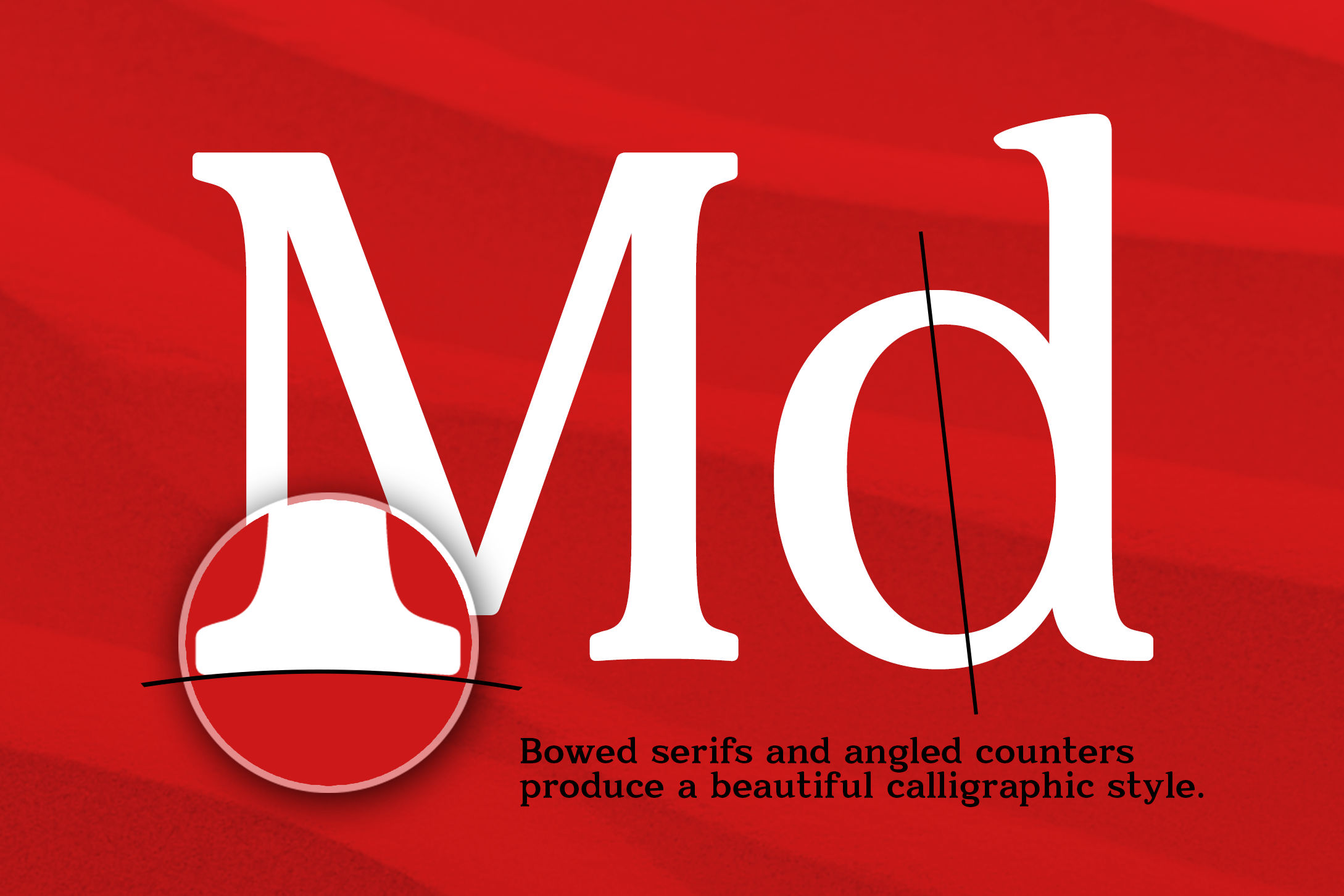 Quantik Elegant Contemporary Serif example image 3