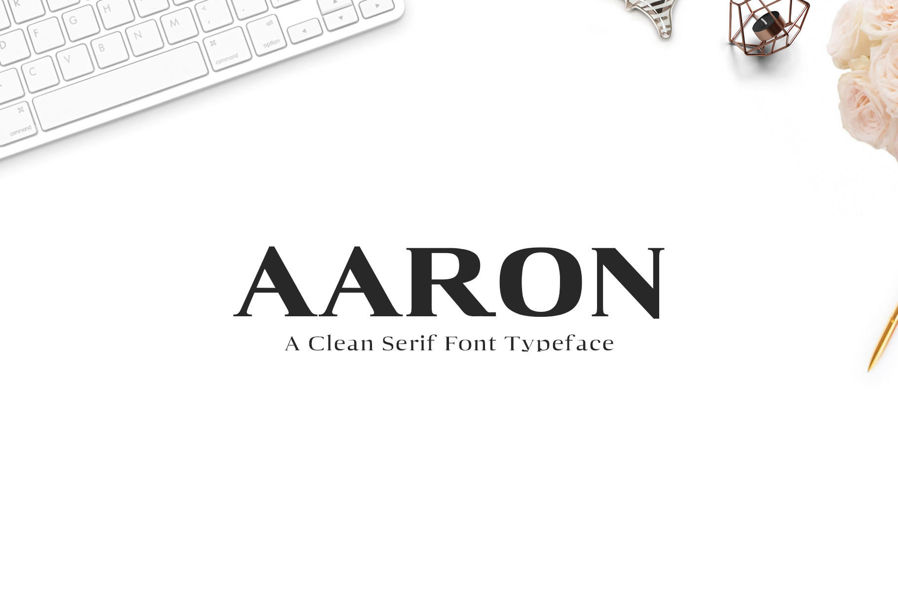 Aaron Serif Font Family example image 1