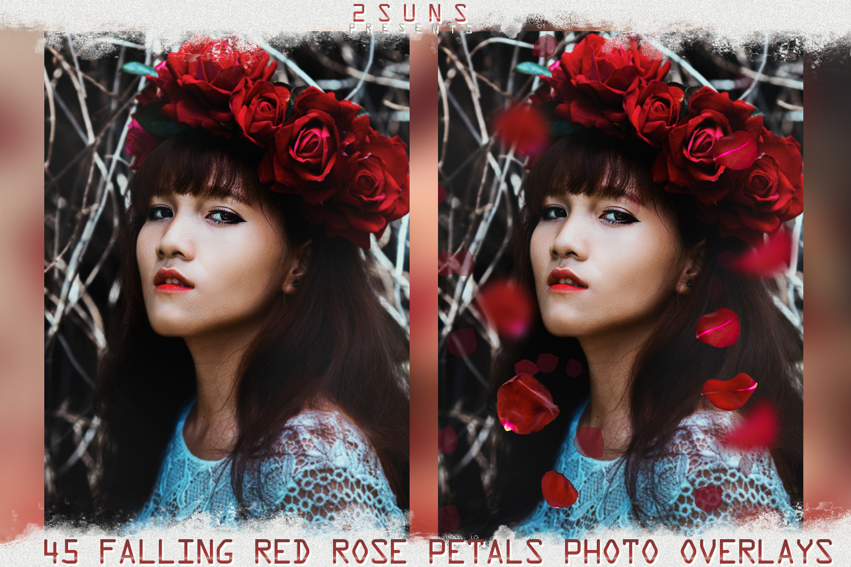 Falling Rose Petals Photo Overlays , Rose Petals, Red Rose example image 4