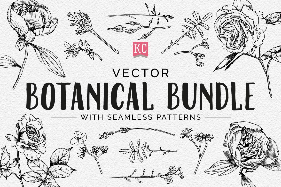 Vector Botanical Bundle Illustrations example image 1