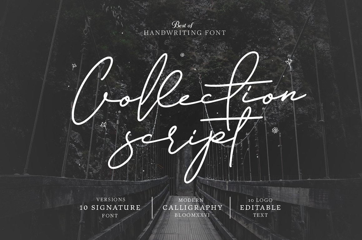 10 Font Script Collection + doodlee art example image 1