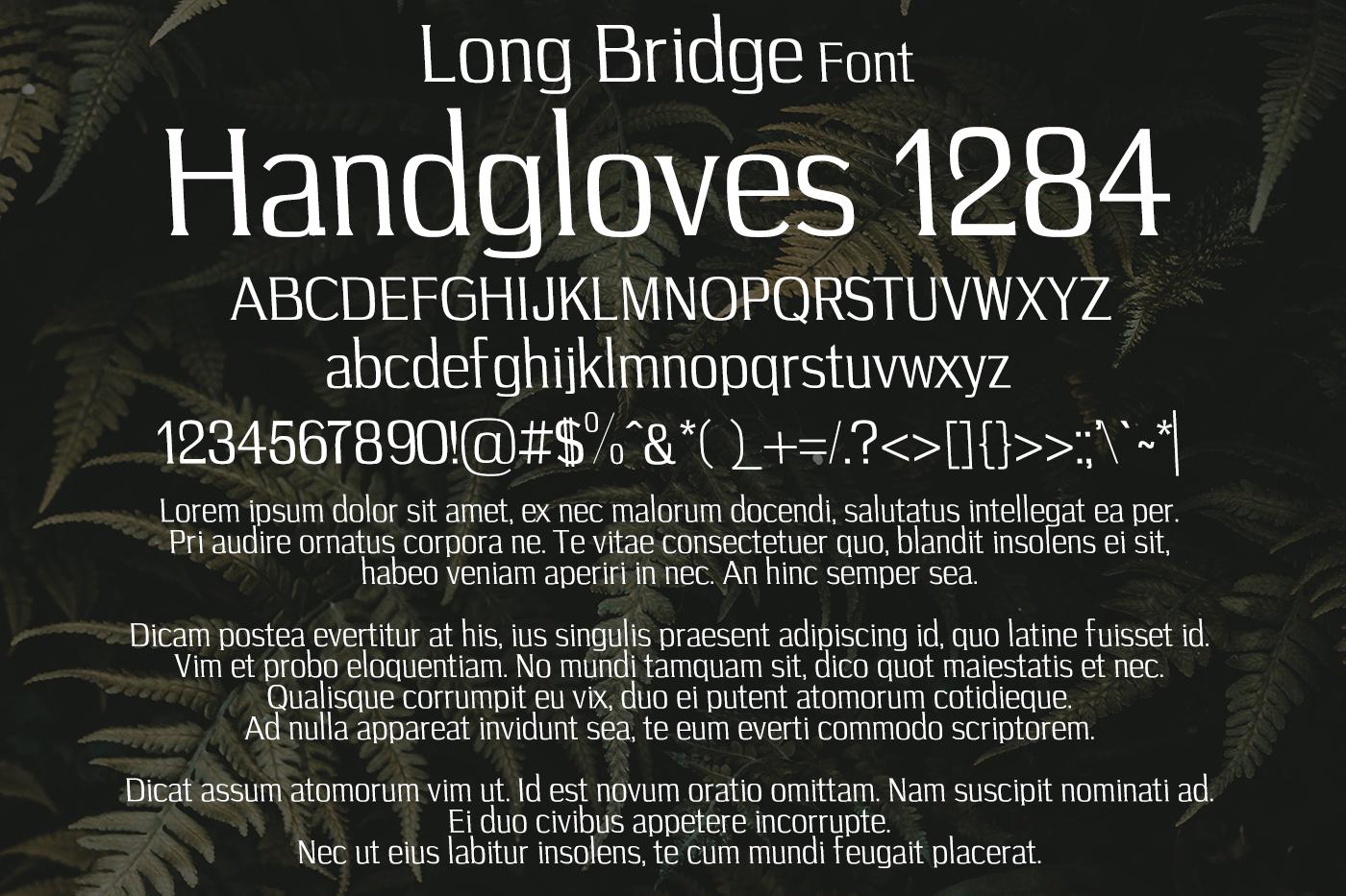 Long Bridge Font example image 2