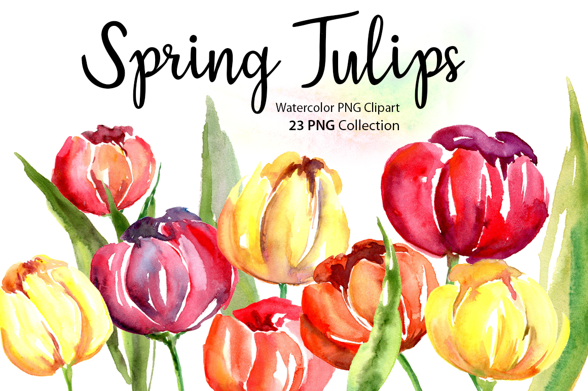 Watercolor Spring Tulips PNG Flowers example image 1