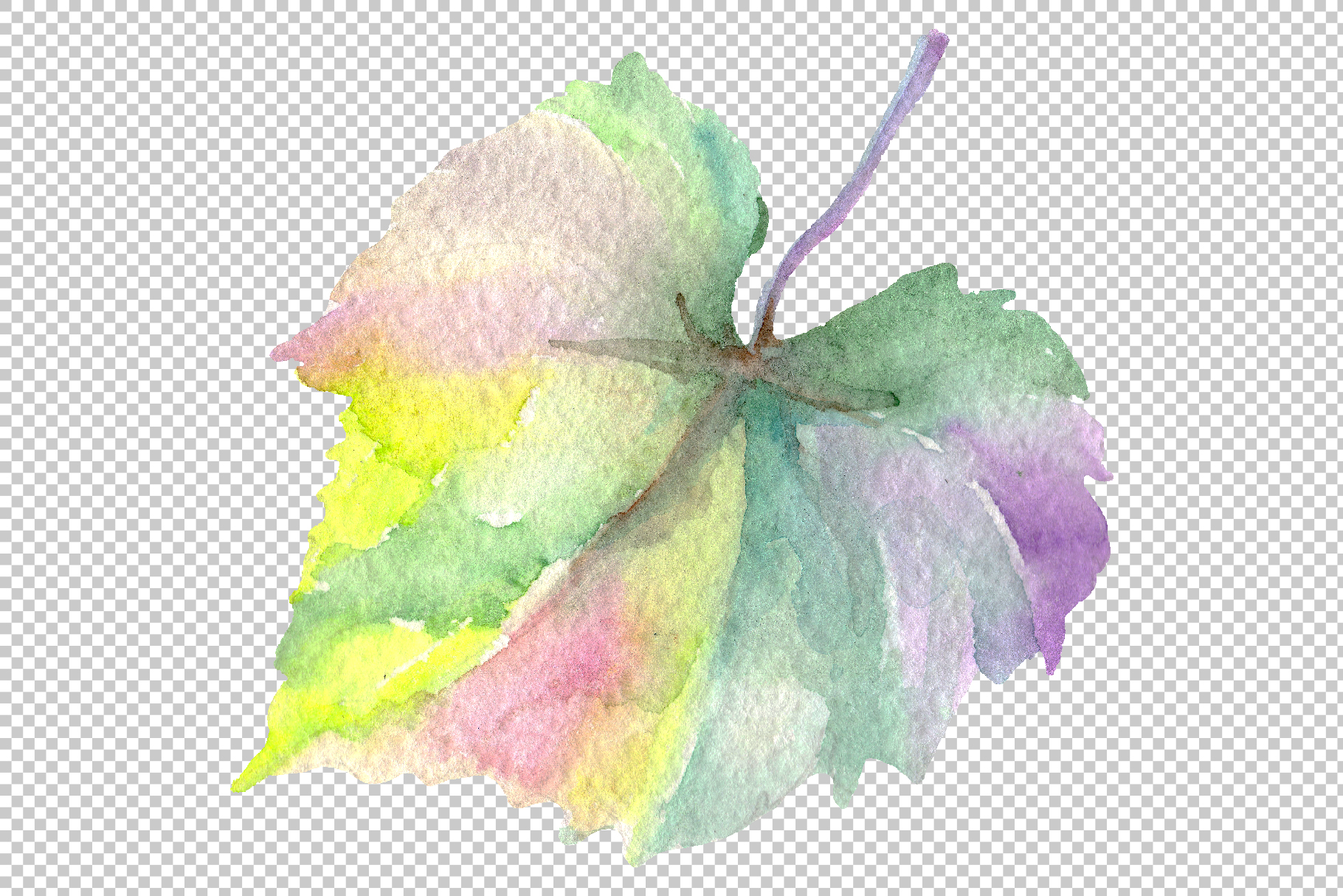 Blue grapes Watercolor png example image 5