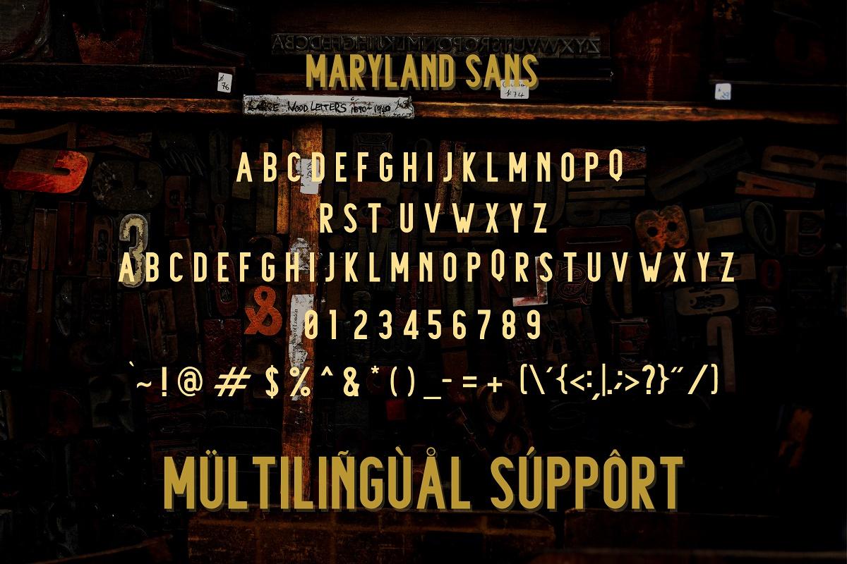 Maryland | Classy Font example image 4