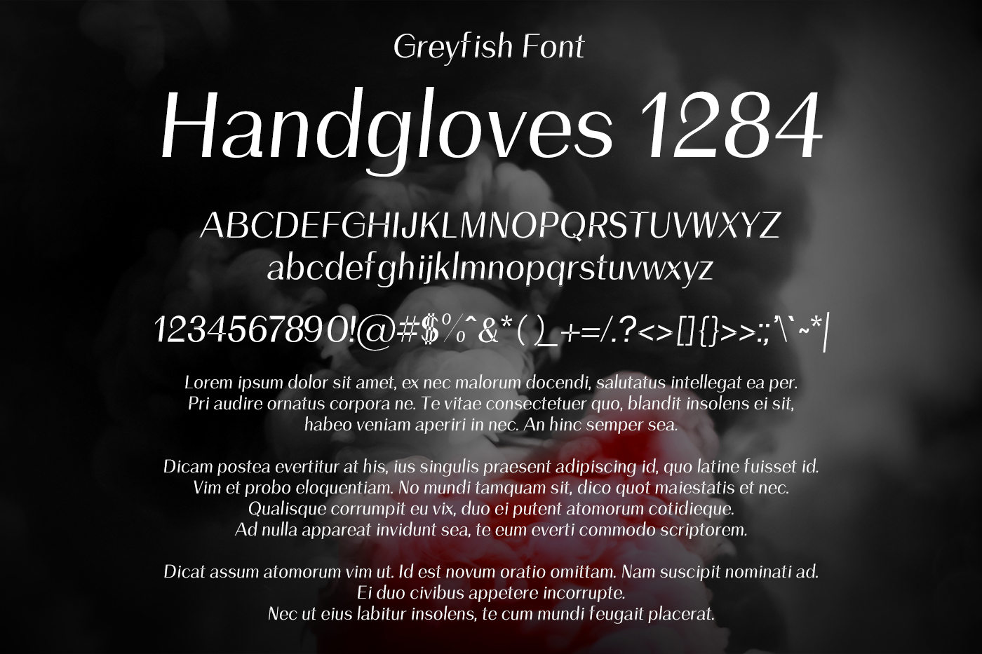 Greyfish Font example image 2