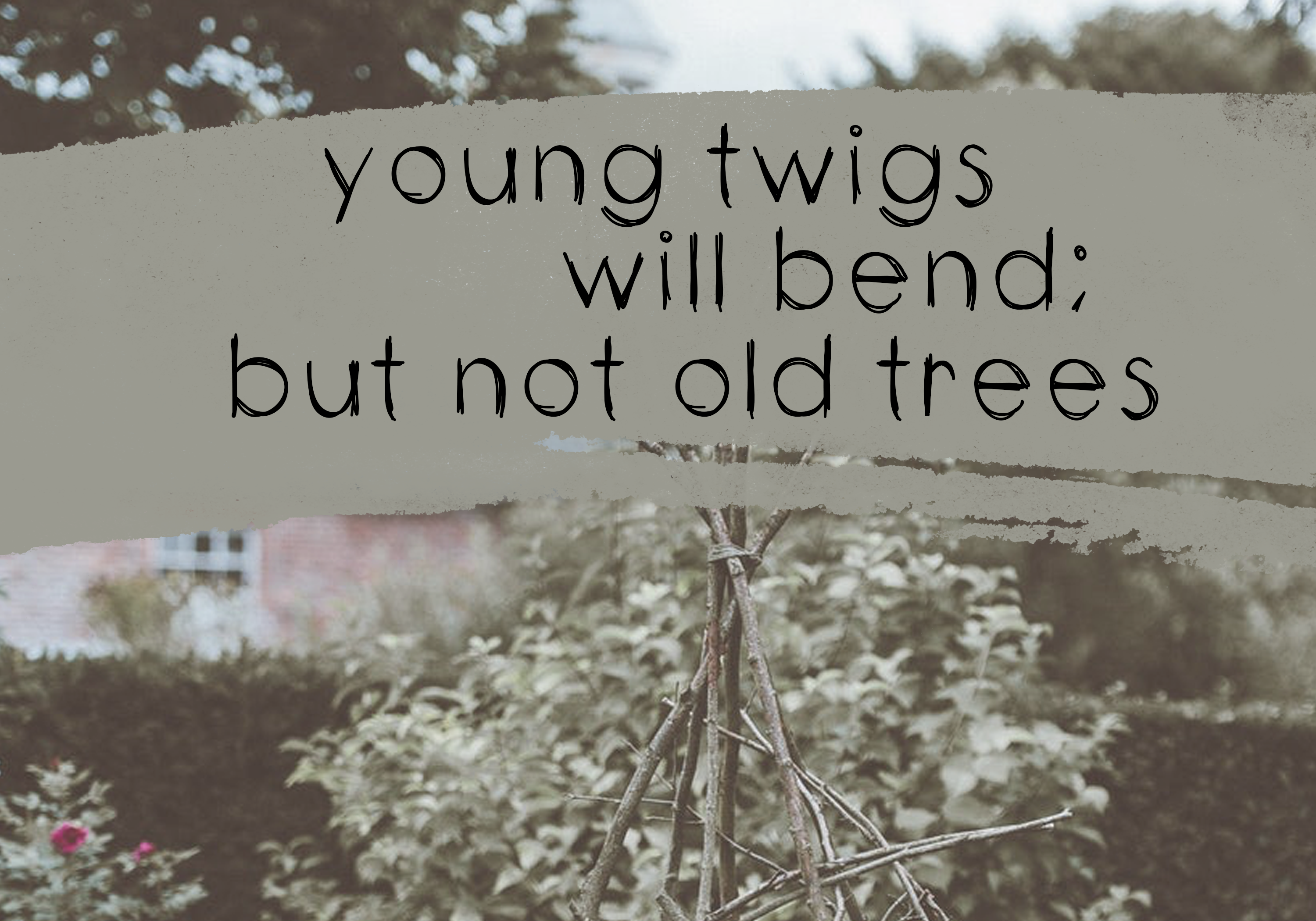 Twigs - A Handwritten Scribble Font example image 5