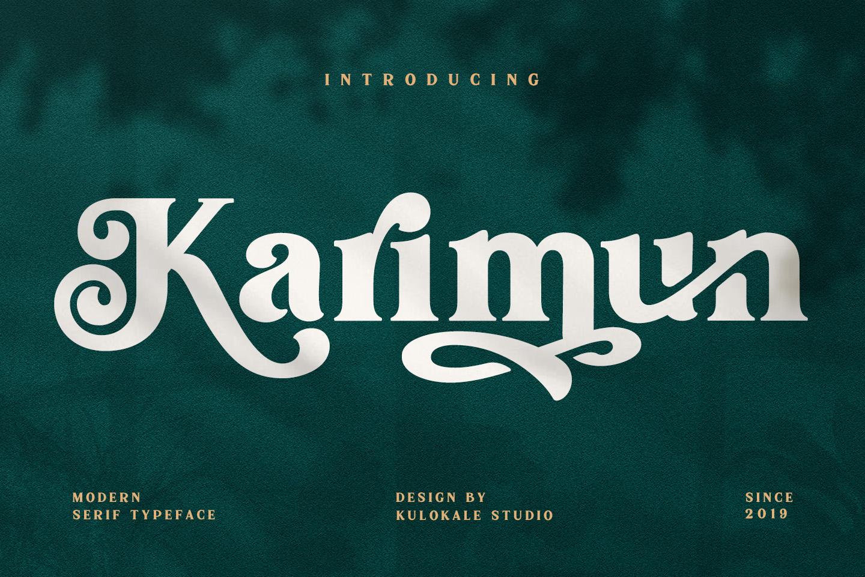 Karimun - Modern Serif Font example image 1