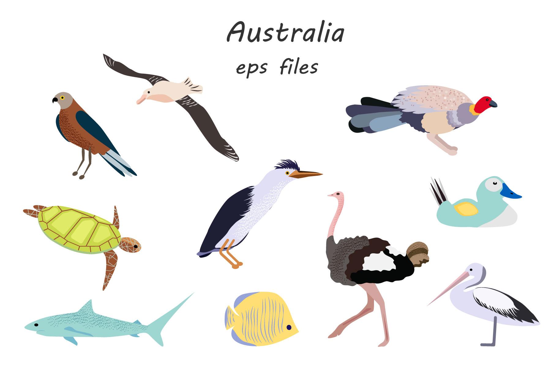 Australian Animals example image 4