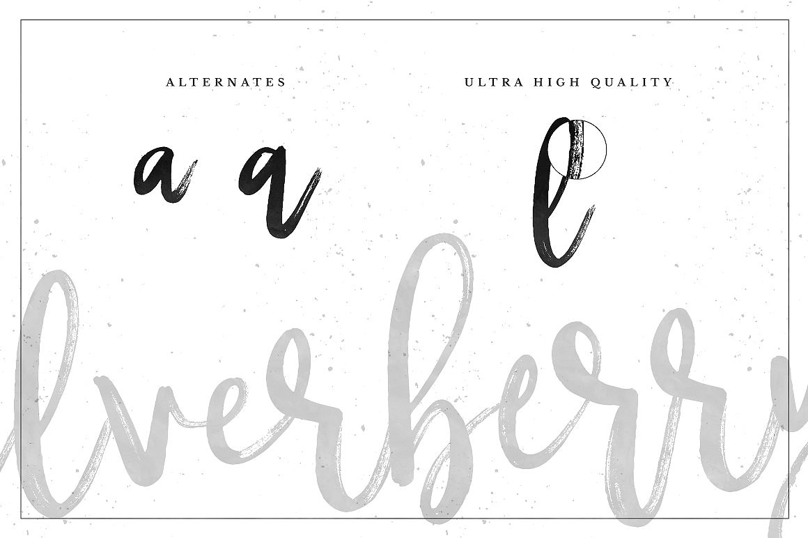 Silverberry - Dry Ink Font example image 6