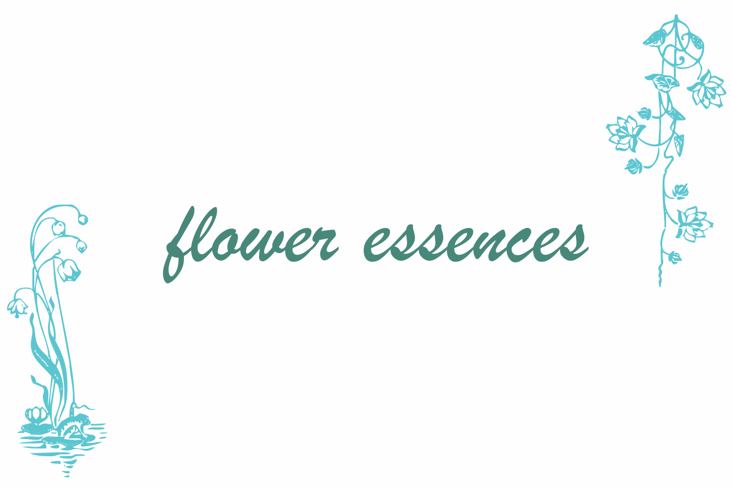 Flower Essences example image 6