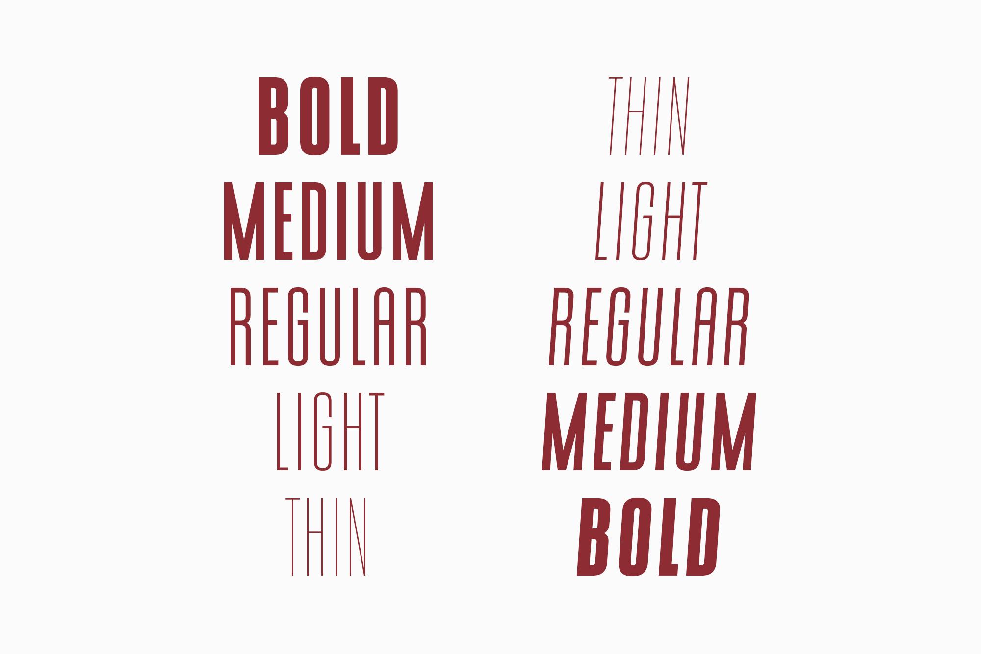 CONQUEST Sans & Slab Serif example image 5