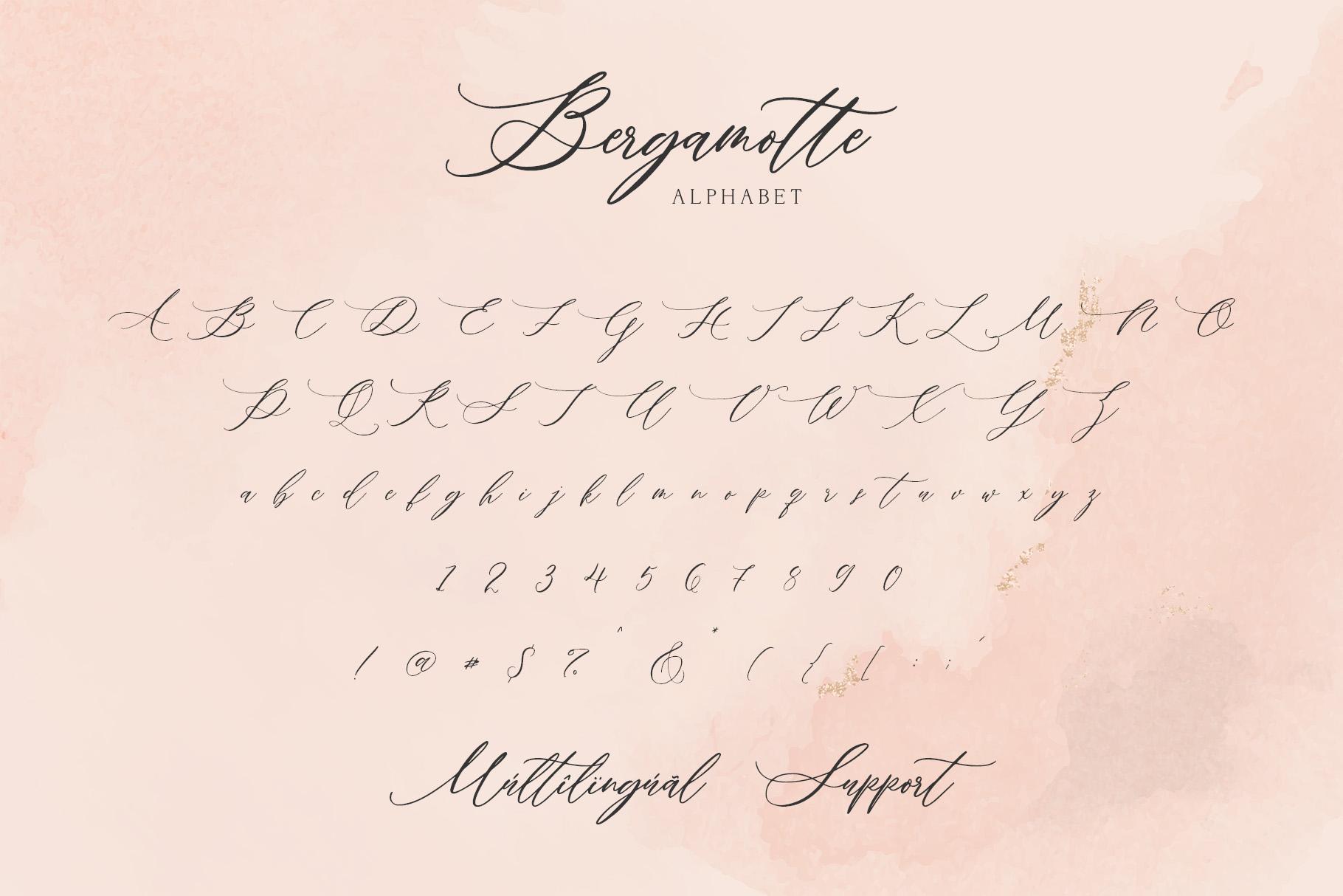 Bergamotte - Fine Art Calligraphy example image 8