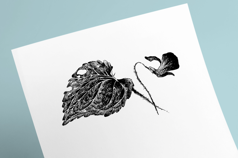 Flower Violet Sketch example image 1