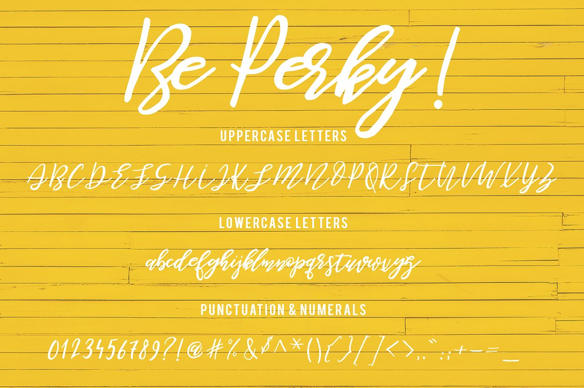 Be Perky! Handwritten Font example image 11