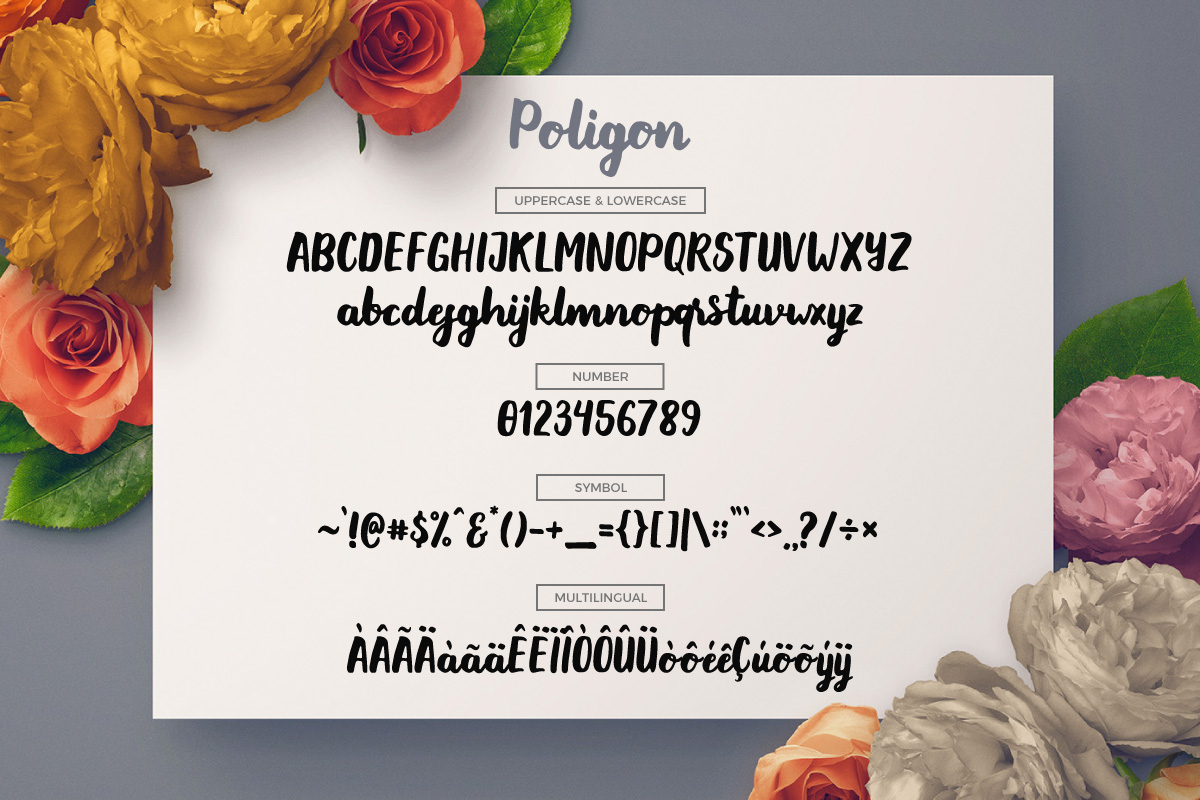 Poligon example image 5
