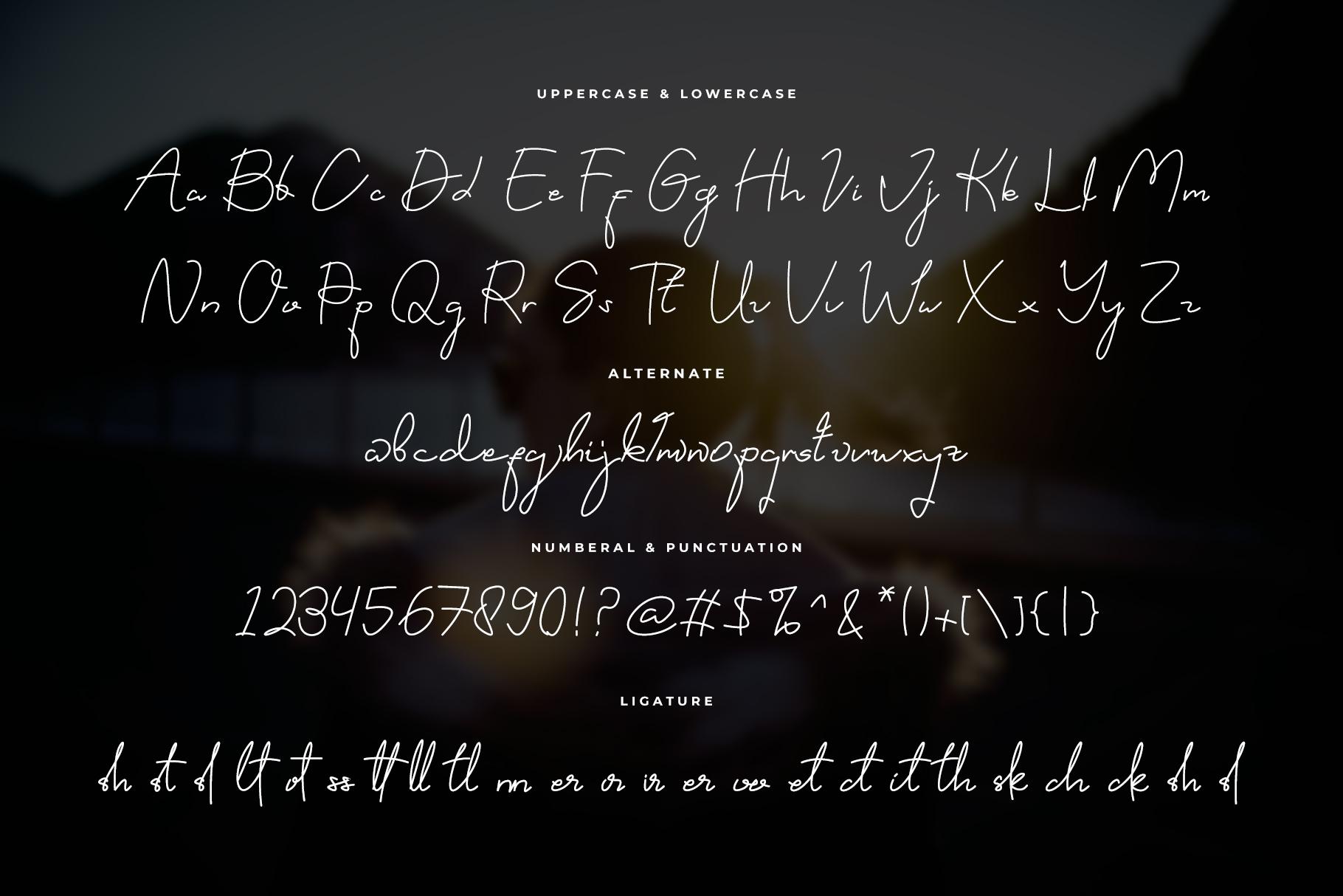 Viyanillya Signature Font example image 11