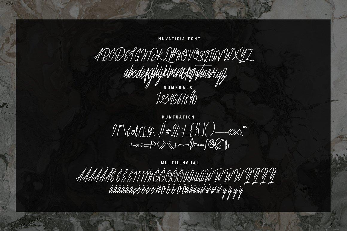 Nuvanticia Typeface + free bonus 43 Vector Skull example image 5