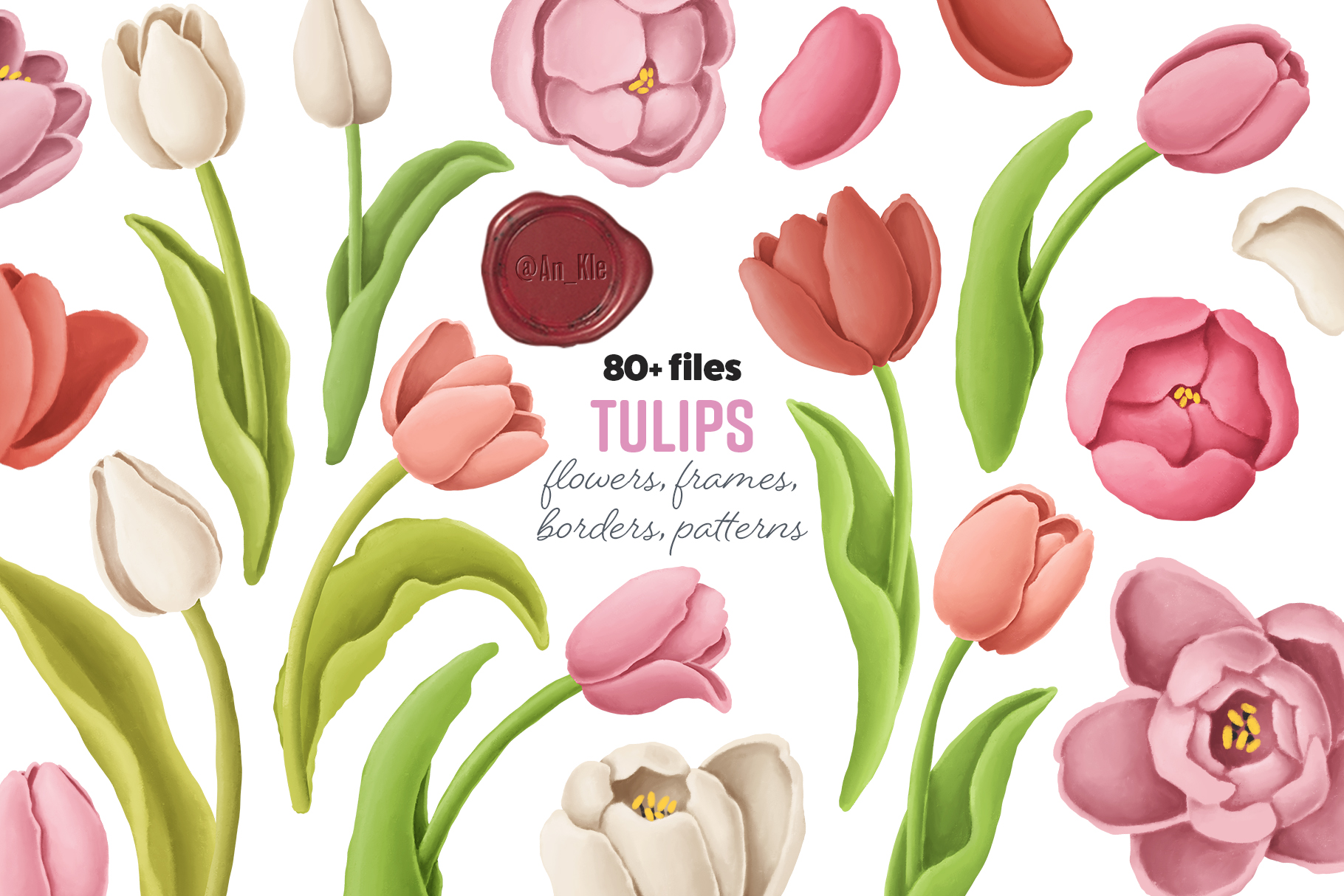 Tulips Flowers Patterns Borders 416500 Illustrations