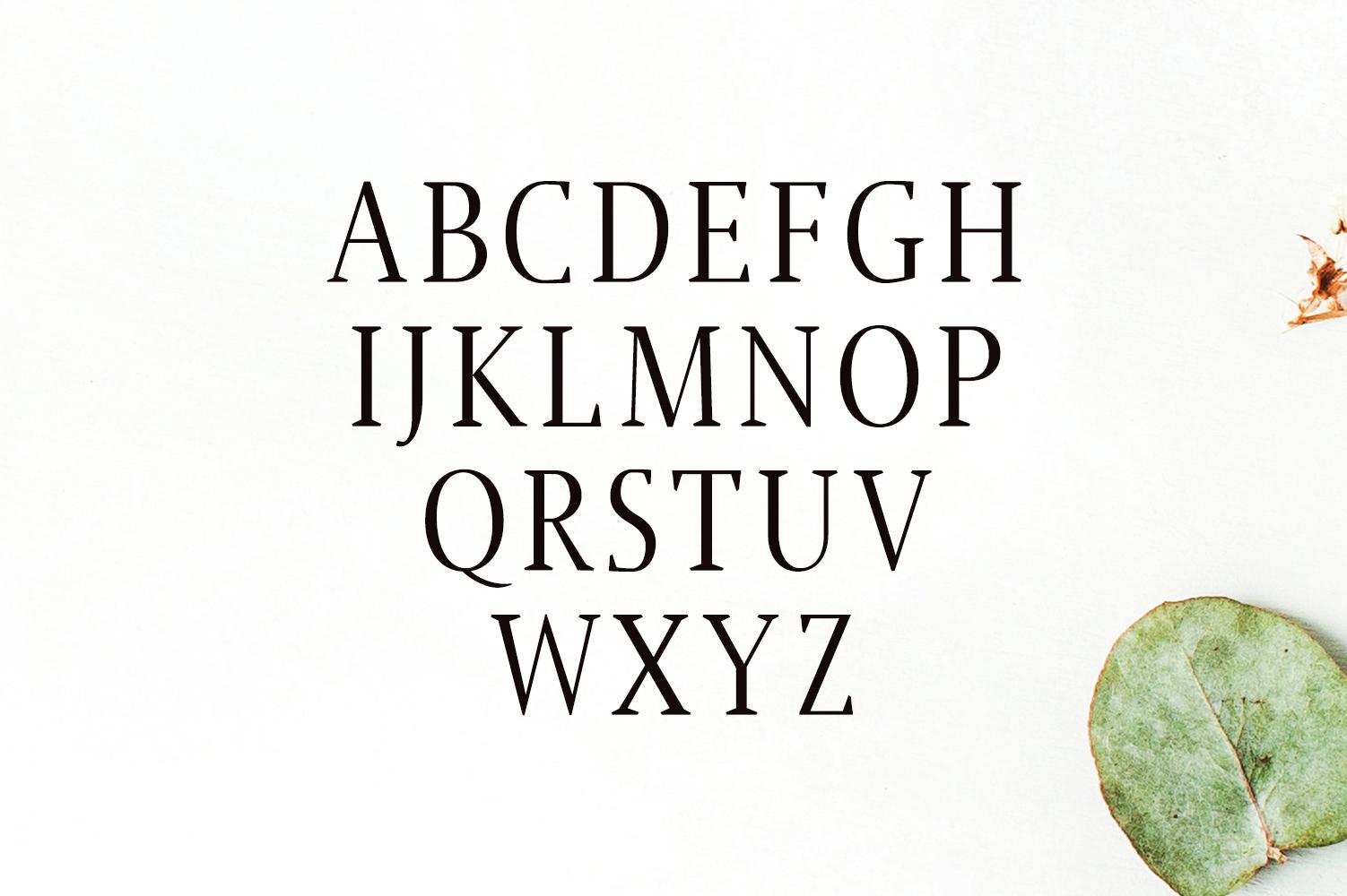 Jerrick Serif 6 Font Pack example image 2