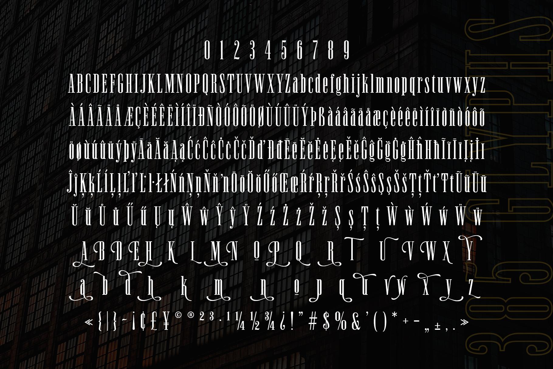 Newston - Stylish Serif Font example image 10