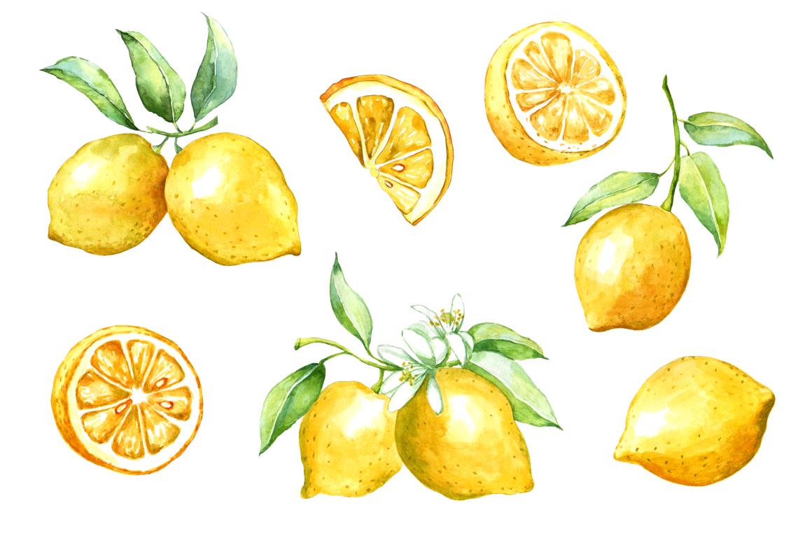Watercolor lemon set example image 2