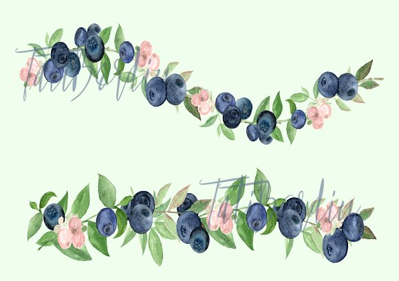 Watercolor Blueberries Clip Art example image 2