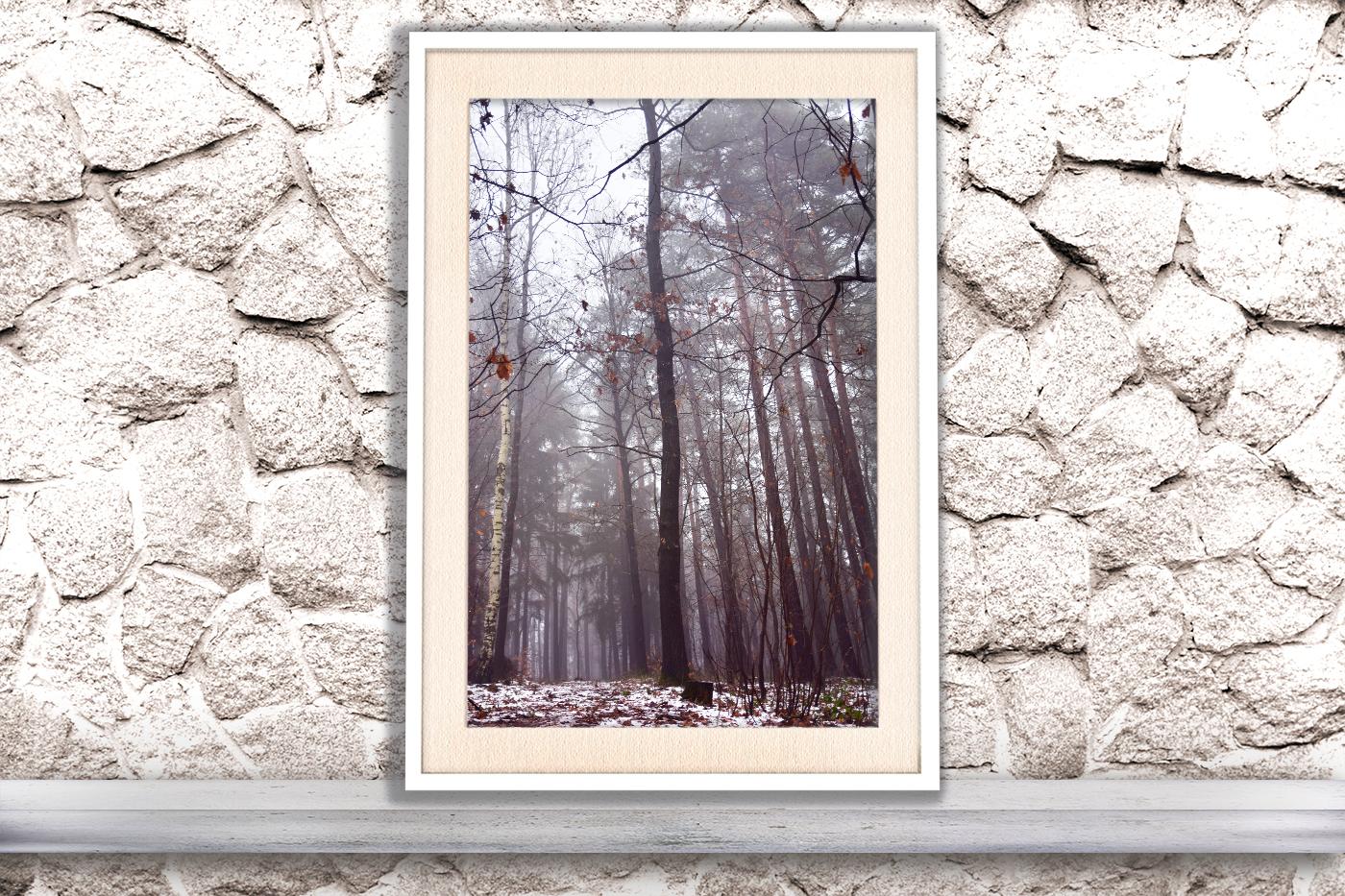 Nature photo, landscape photo, forest photo, winter photo example image 2
