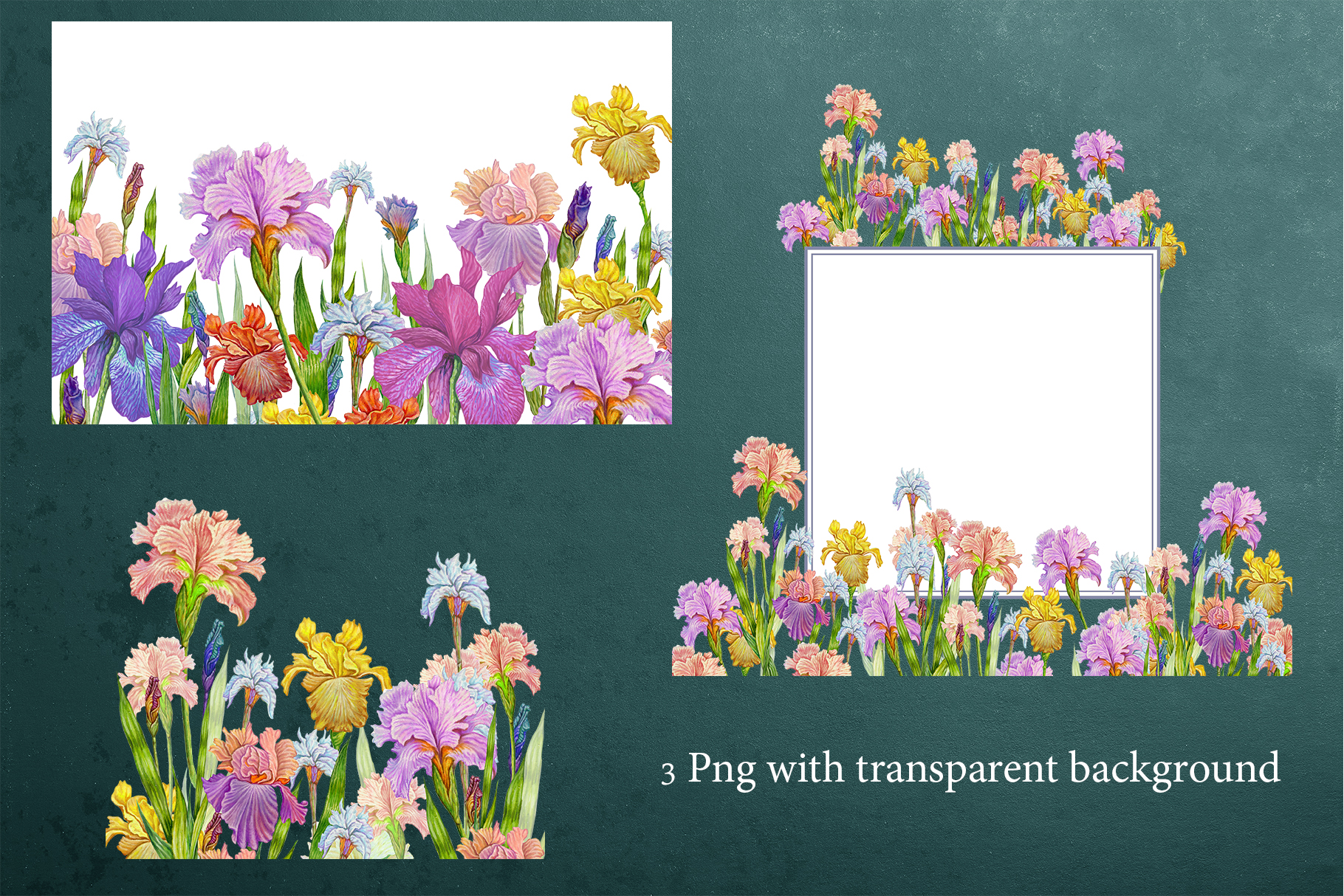Flower Clipart, iris flowers,23 element Oil hand painting. example image 3