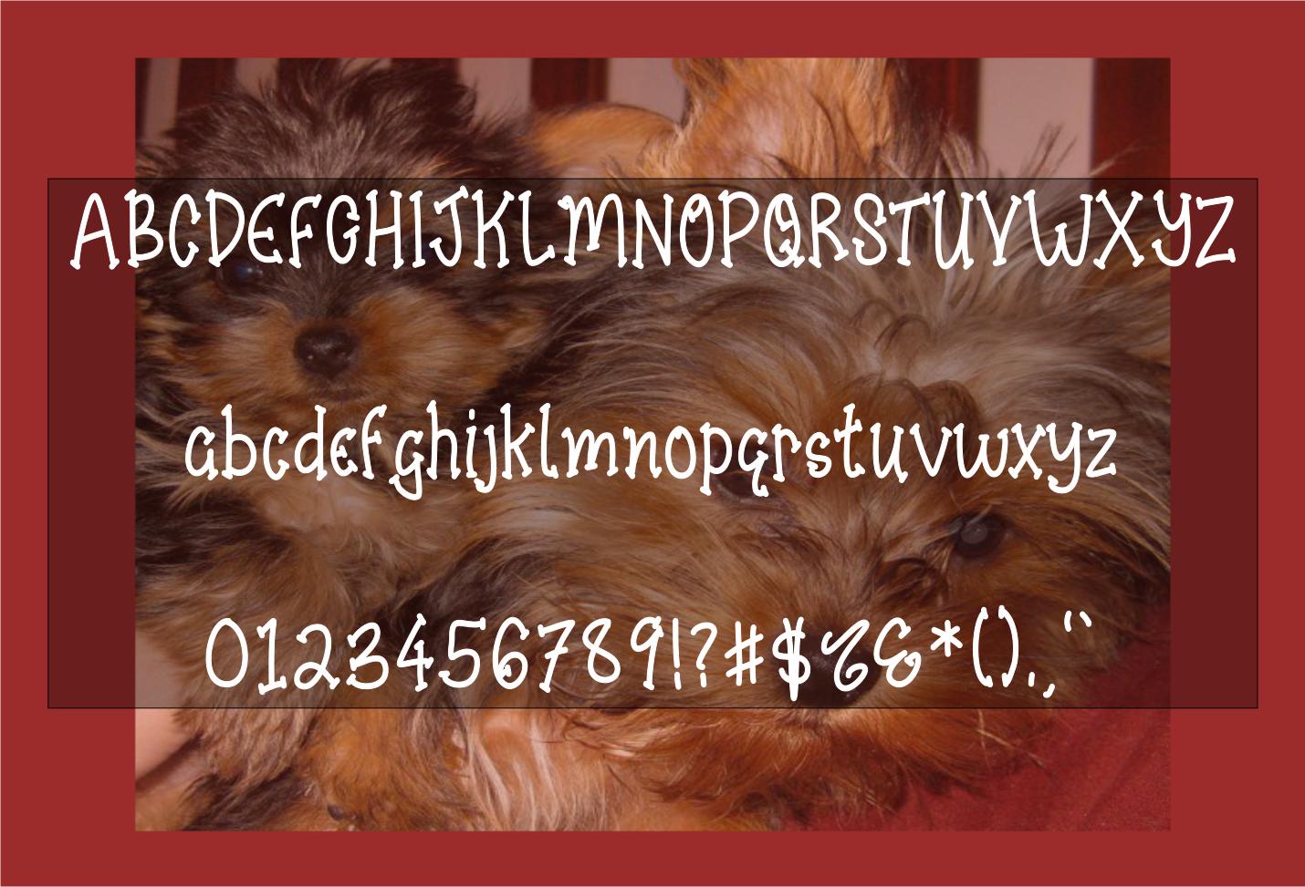 Dorkie Yorkie - A Handwritten Playful Font with BONUS SVG example image 2