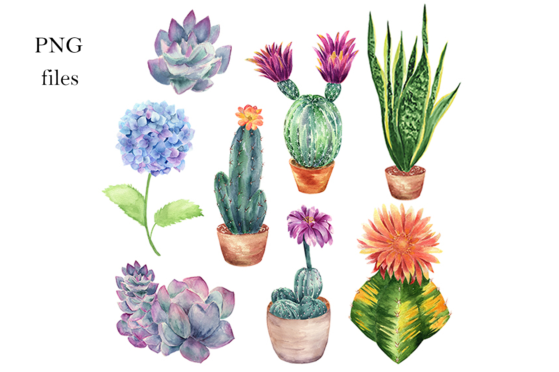 Watercolor Cactus and Flowers Clipart. example image 3
