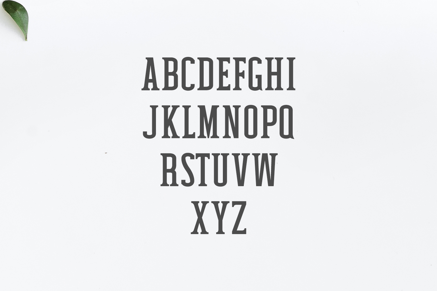 how to add font family to css