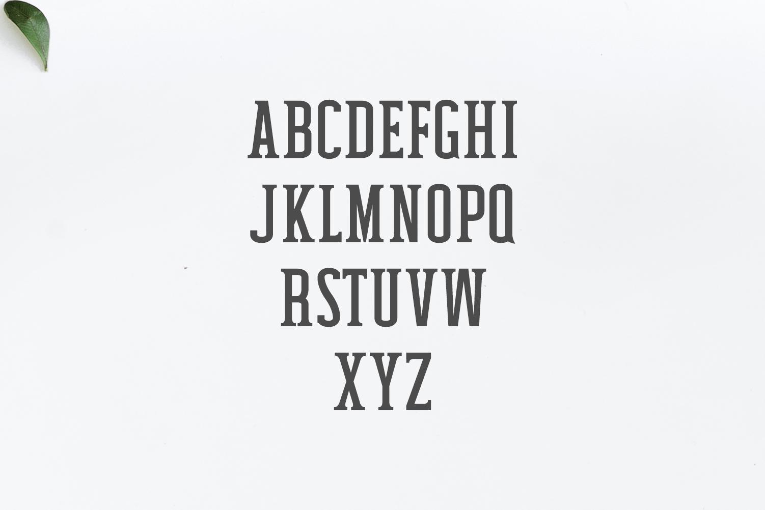Mahlon Serif 3 Font Family Pack example image 3