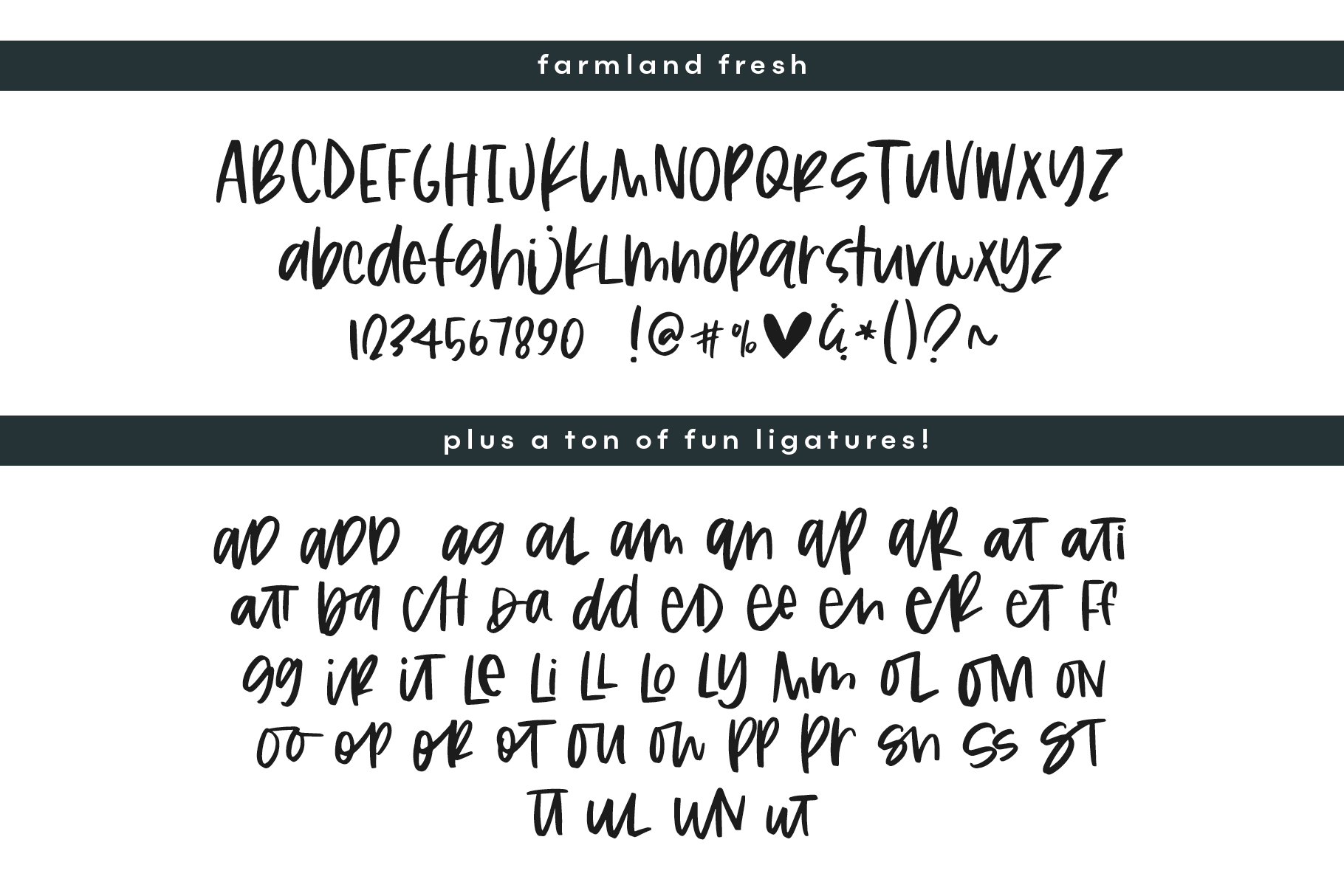 Farmland Fresh - A Font Duo with Doodles example image 18