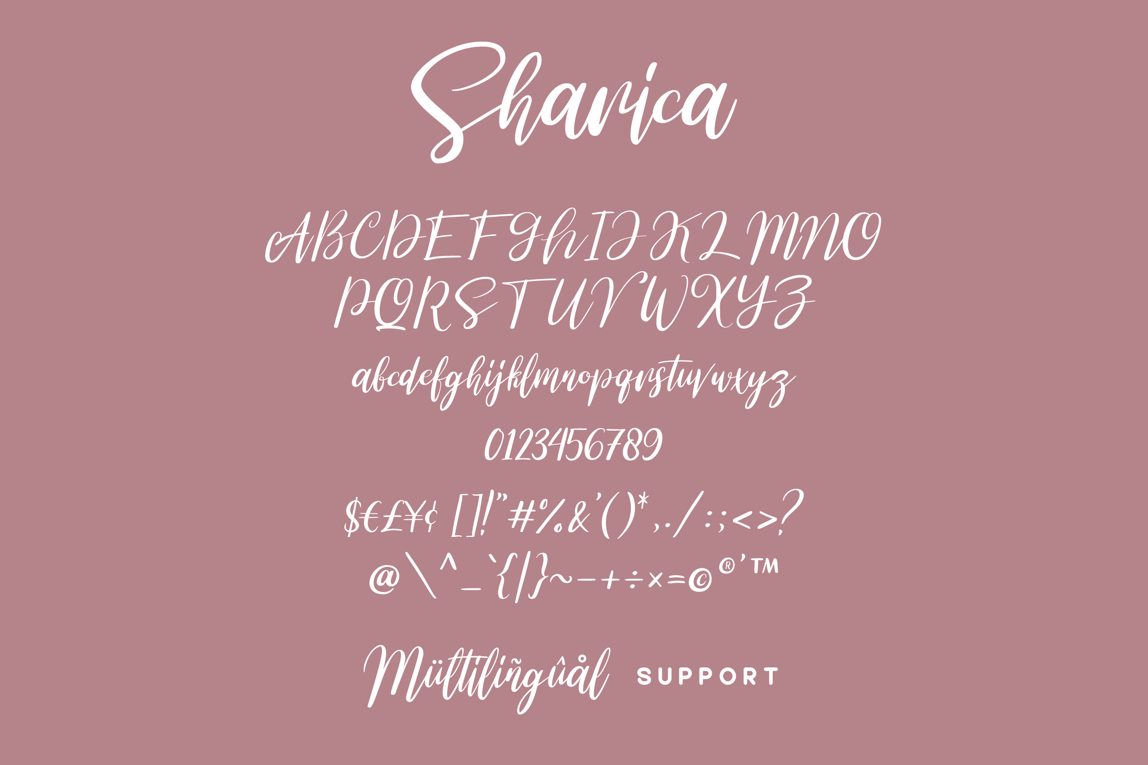 Sharica - Script Font example image 5