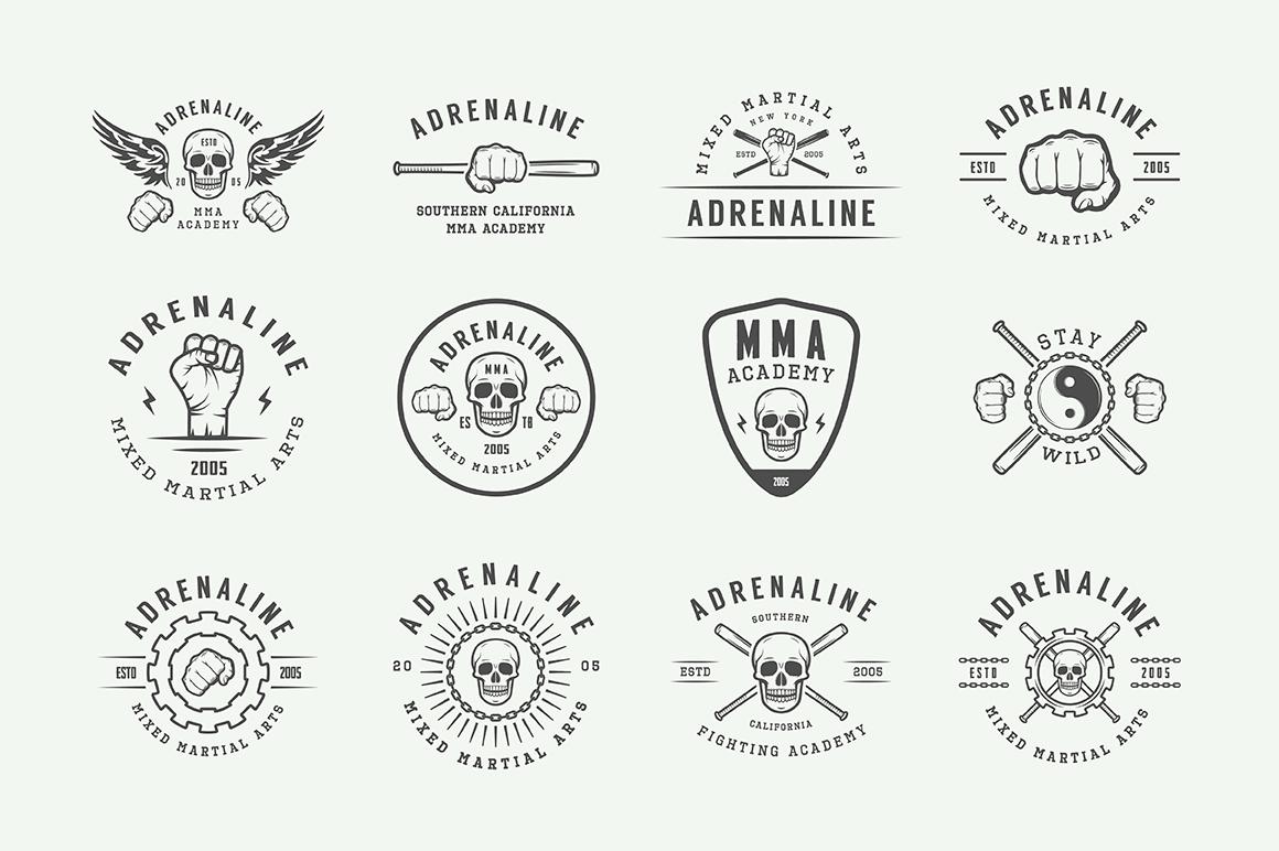 Vintage Fighting Emblems Bundle example image 8