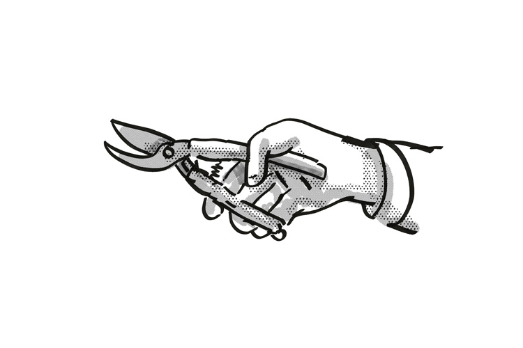 Hand holding Secateurs Garden Tool Cartoon Retro Drawing example image 1