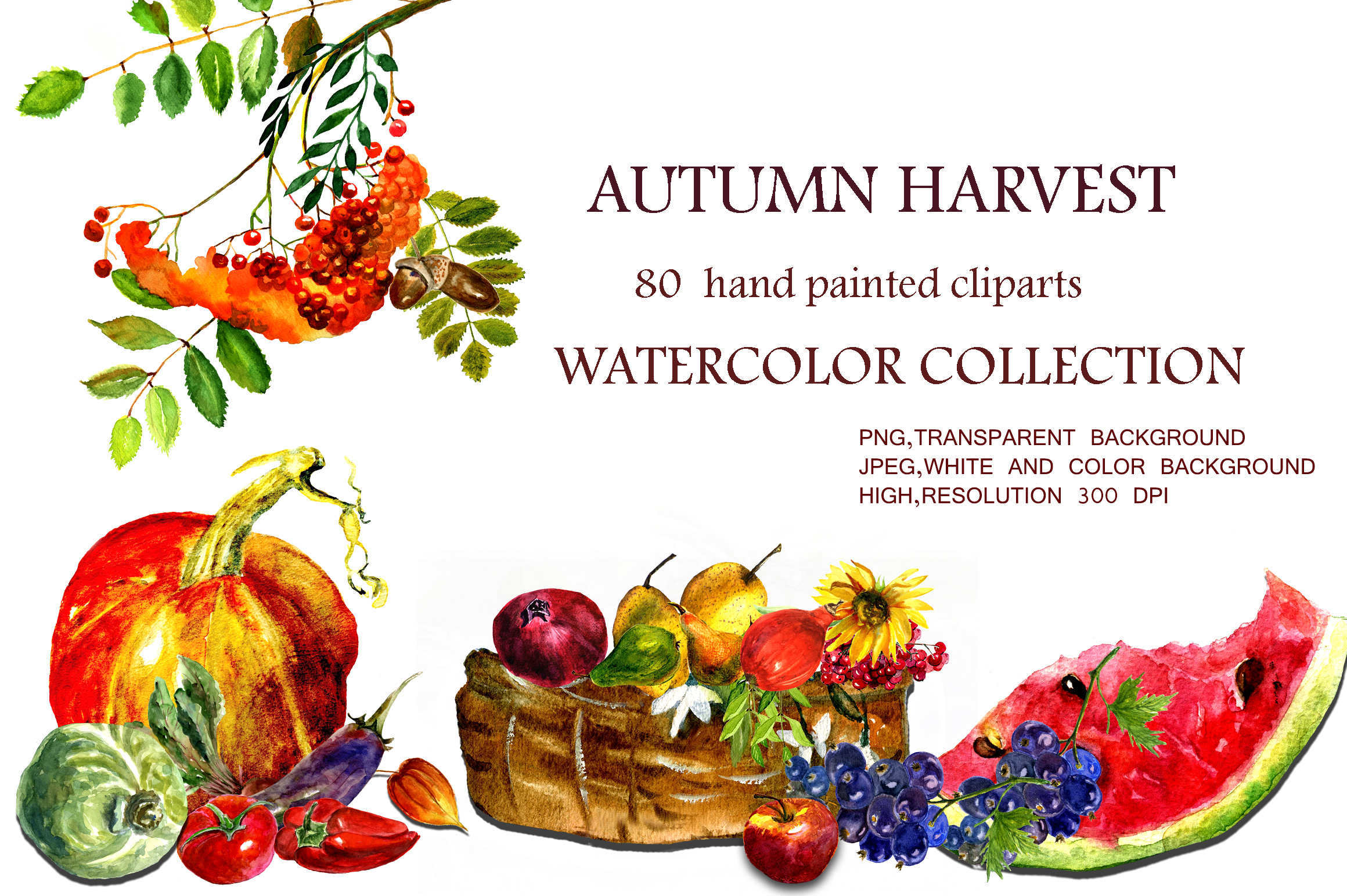 Watercolor collection Autumn Harvest example image 1