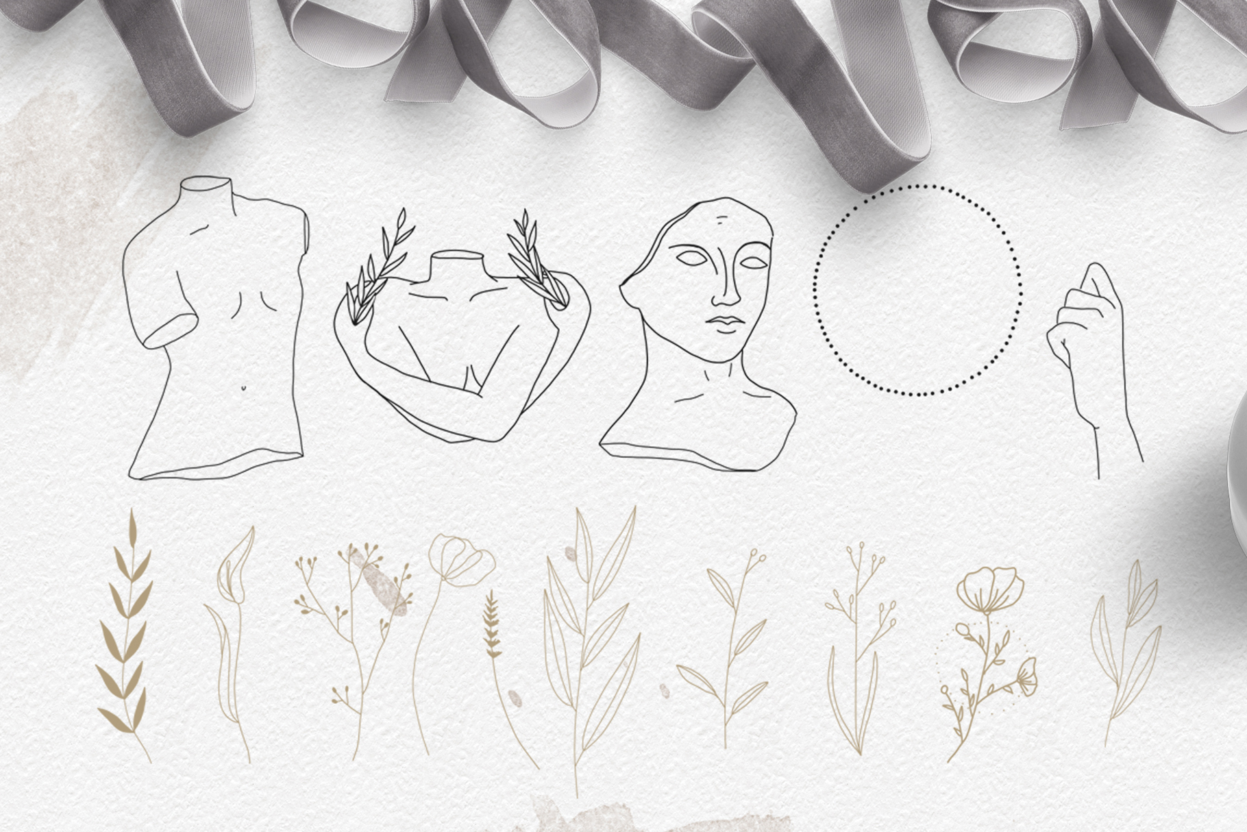 Line art botanical illustrations example image 10