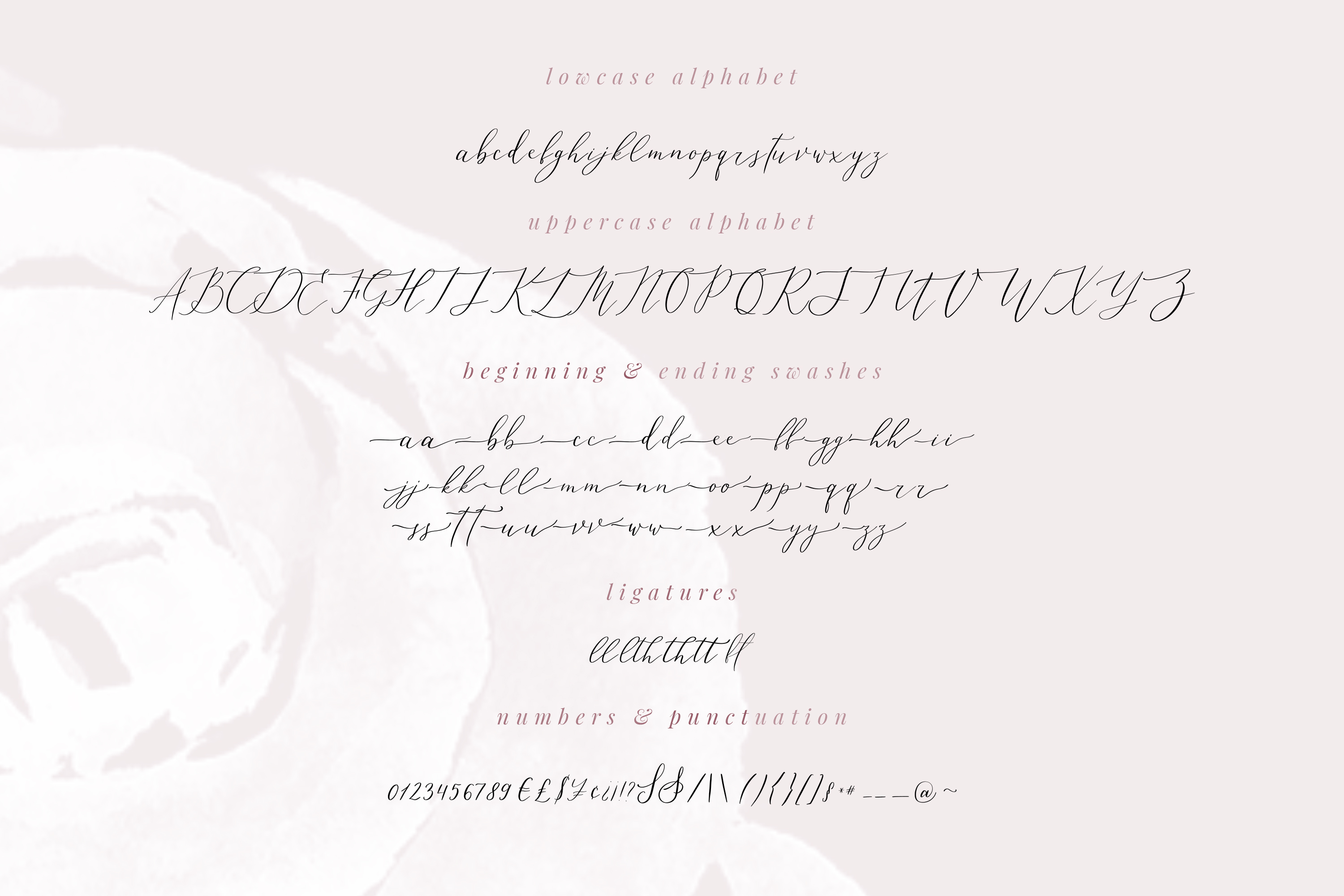 Leisoll Reef, modern calligraphy script example image 2