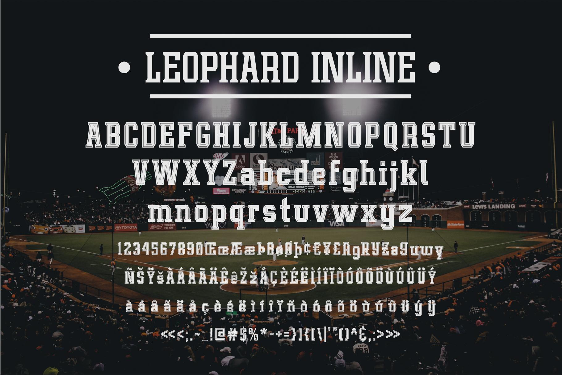 Leophard Font Family example image 11