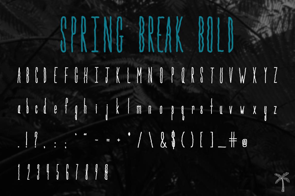 Spring Break Font & Bonus Graphics example image 5